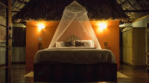 Treetop Suite Portofino Belize